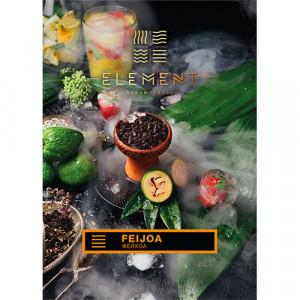 Табак Акциз Element earth line Feijoa 40 гр