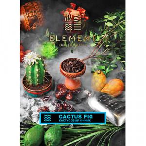 Тютюн Акциз Element water line Cactus Fig 40 гр